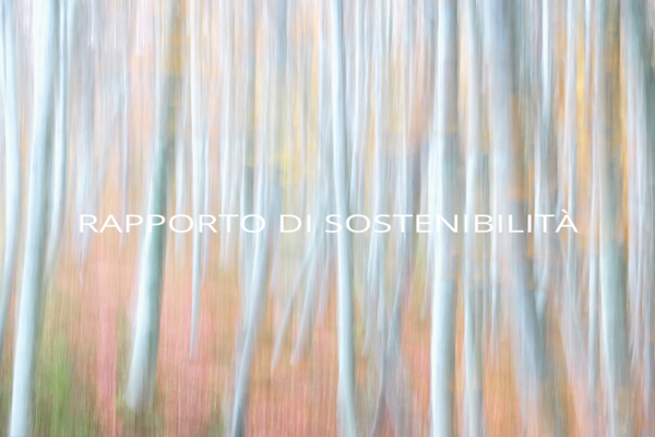 Online il Rapporto di Sostenibilità Italpreziosi